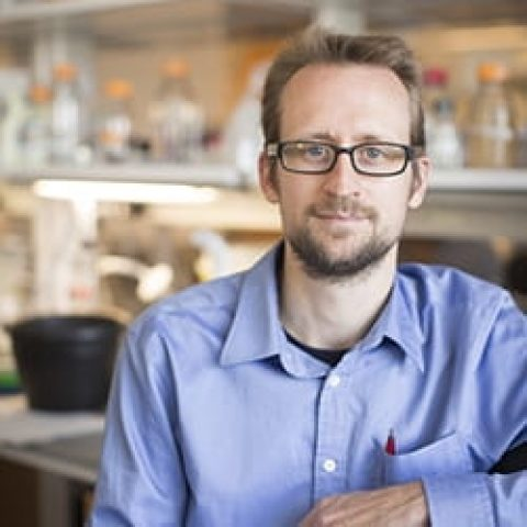 Tobias Dörr, Cell & Molecular Biology