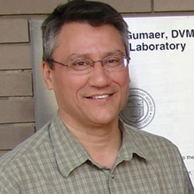 Gerald Duhamel, Biomedical Sciences