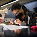 a student works in a Comstock lab