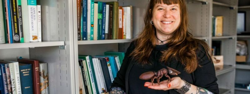 Corrie Moreau, director of the Cornell University Insect Collection. Photo by Allison Usavage/Cornell University